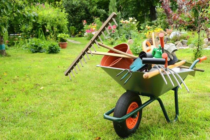 Gartenpflege  Gartenpflege - Gartenservice Bergstrasse